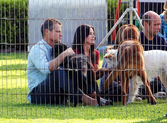 Courteney Cox and Her Cougars Are Joined on Set by a Pack of Dogs