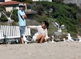Seagulls flocked to Justin and Selena.