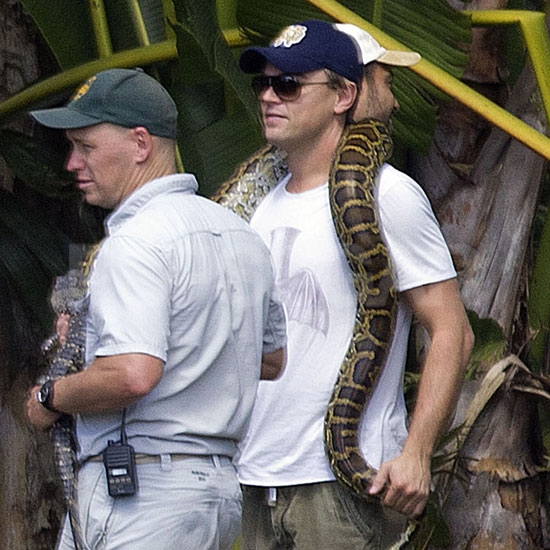 Leonardo DiCaprio got up close and personal with a snake in Australia.