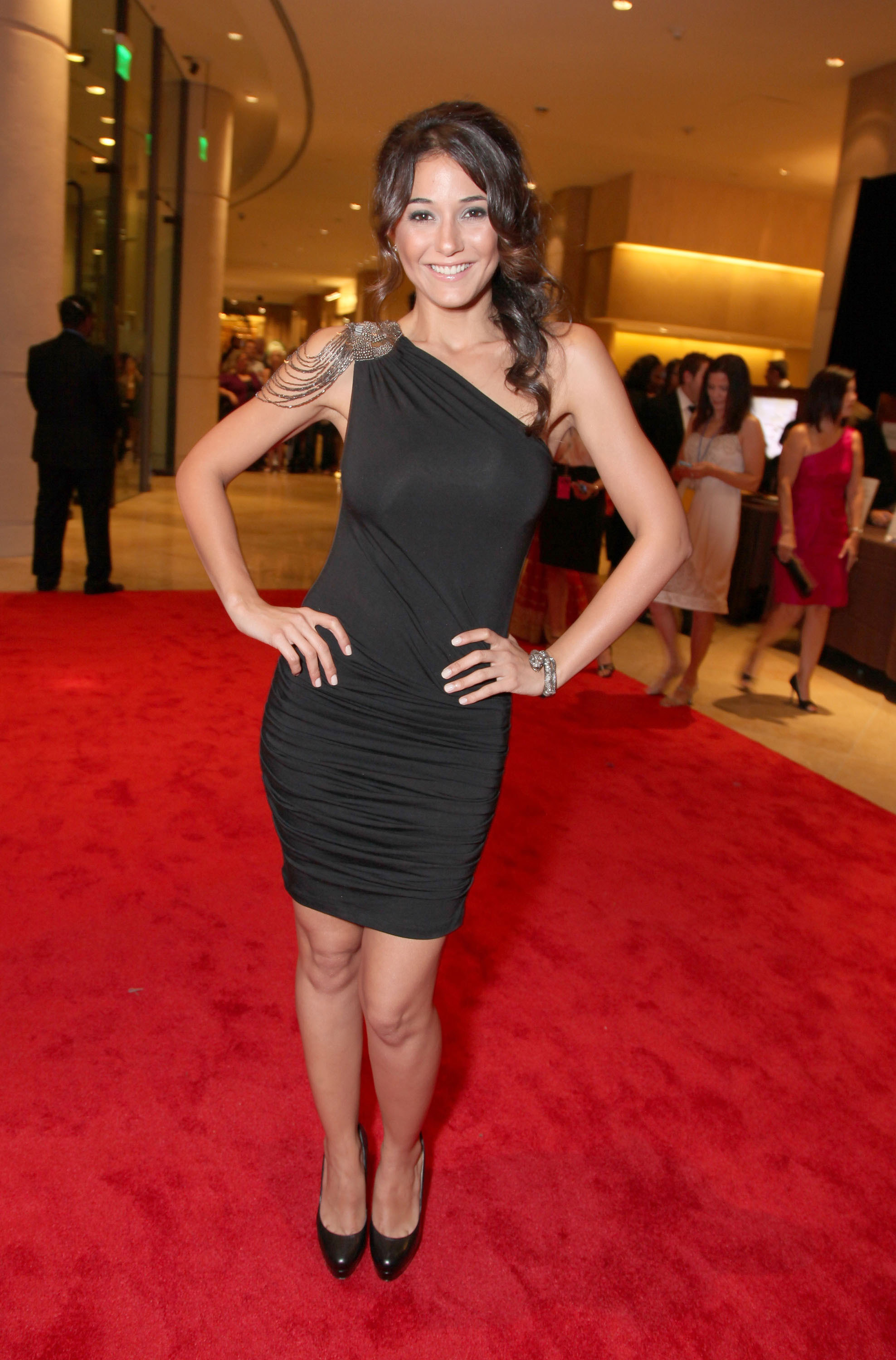 Emanuelle Chriqui hit the red carpet solo.