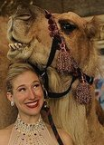 A camel cozies up to a Rockette.