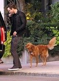 Ryan Reynolds and his dog in Boston.