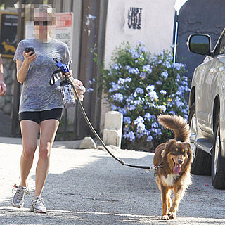 Movie Star Celebrity Walking Her Dog in LA