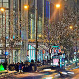 Chicago's Best Shopping Streets