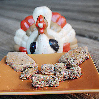 Recipe For Turkey and Cranberry Dog Treats