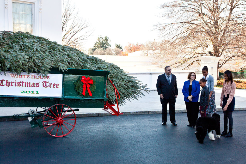 The Obamas and Bo Receive the White House Christmas Tree