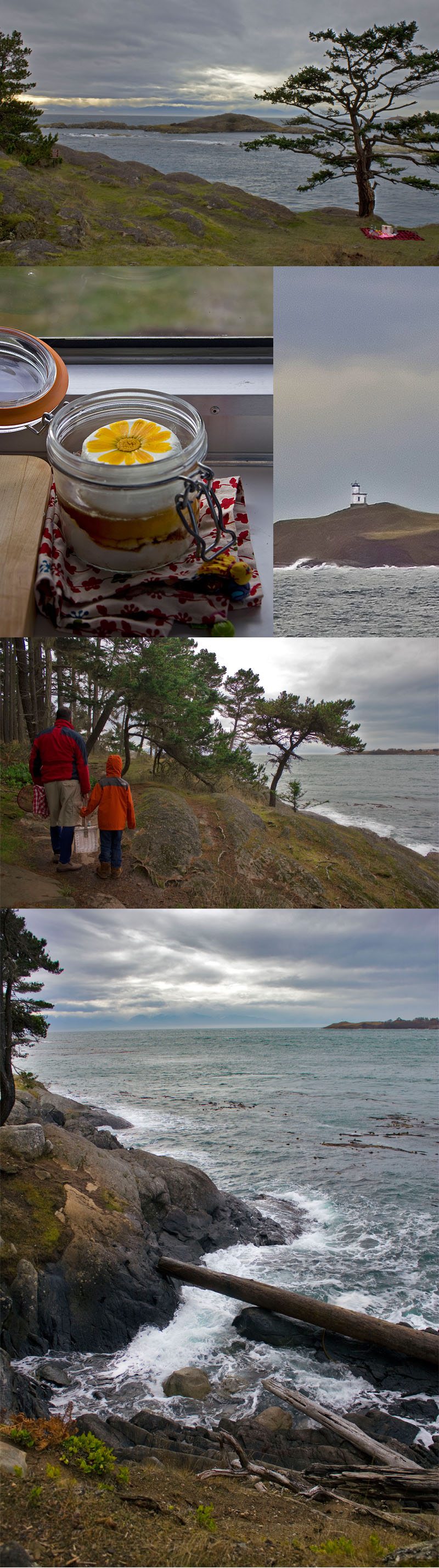 Picnic with a view at Shark Reef Cove, Lopez Island, WA State