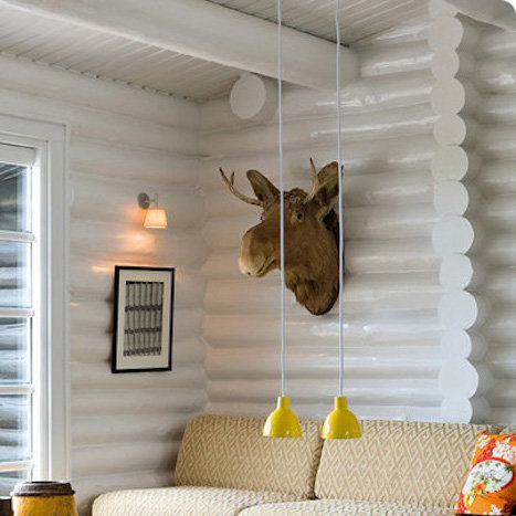 Decorating a Modern Cabin