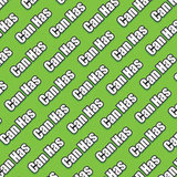 Can Has wrapping paper ($6)