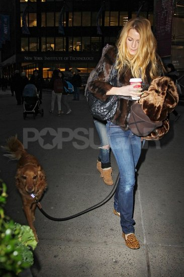 Blake Lively took Ryan Reynolds's dog, Baxter, for a walk on the set of Gossip Girl.