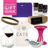 PopSugar 2011 Accessory, Shoe, Home Gift Guide