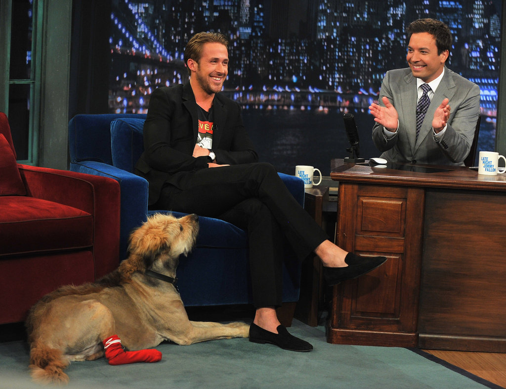 Ryan brings his dog George to Late Night With Jimmy Fallon.
