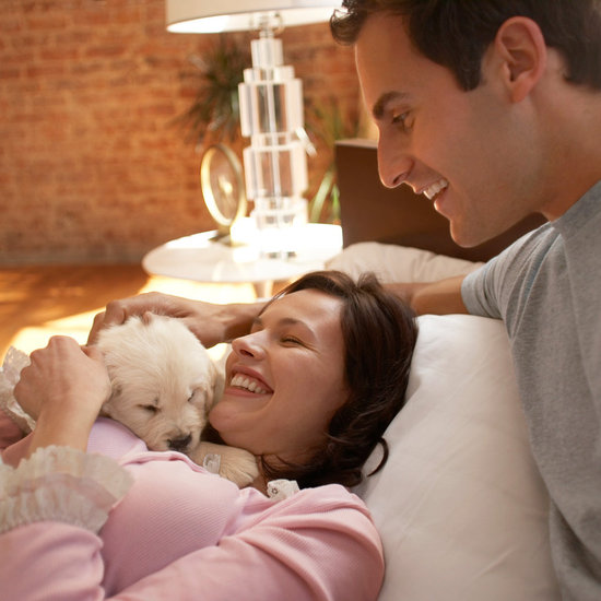 5 Things to Do Before Introducing Pup to Your New Baby