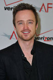 Aaron Paul at AFI Awards in LA.