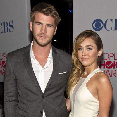 Miley Cyrus Gives Liam Hemsworth an Adopted Puppy For His Birthday