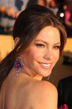 Sofia Vergara hit the SAG Awards red carpet.