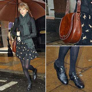 Taylor Swift's Cat Print Dress