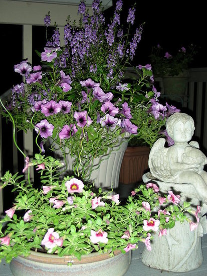 container gardens on backyard deck