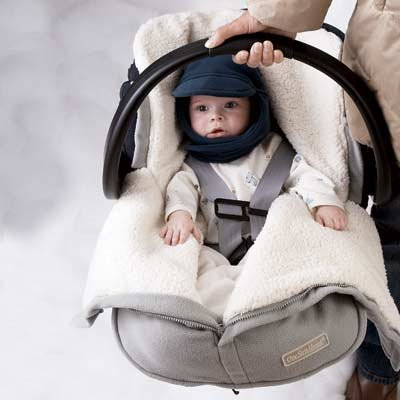 One Step Ahead Cozy Cub Baby Snuggle Sack Car Seat Bunting ($30)