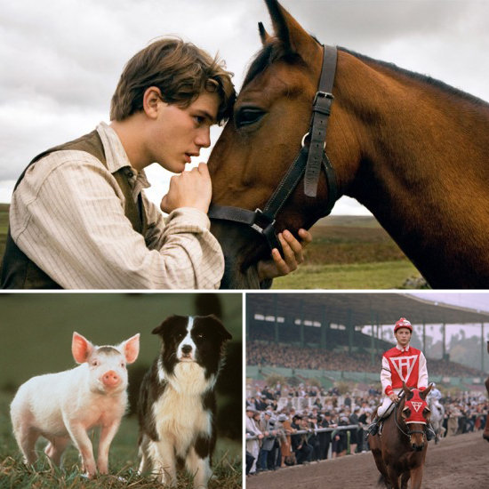 Best in Show: Best Picture-Nominated Animal Films