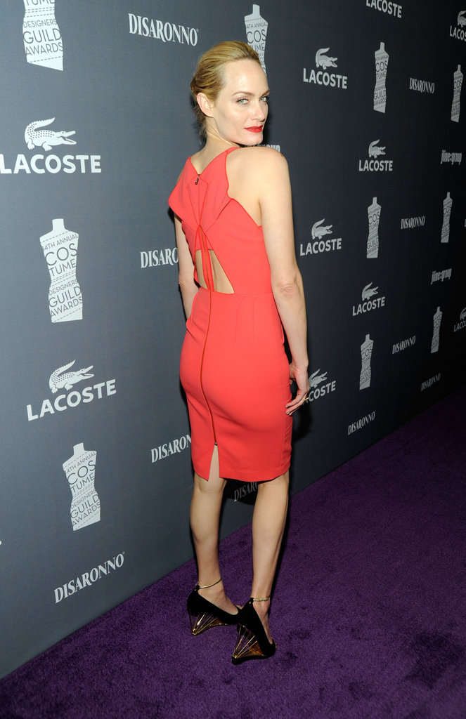 Amber Valletta wore an intricate dress.
