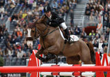 Dutch Warmblood Viking competes in the Grand Prix Hermès in Paris.