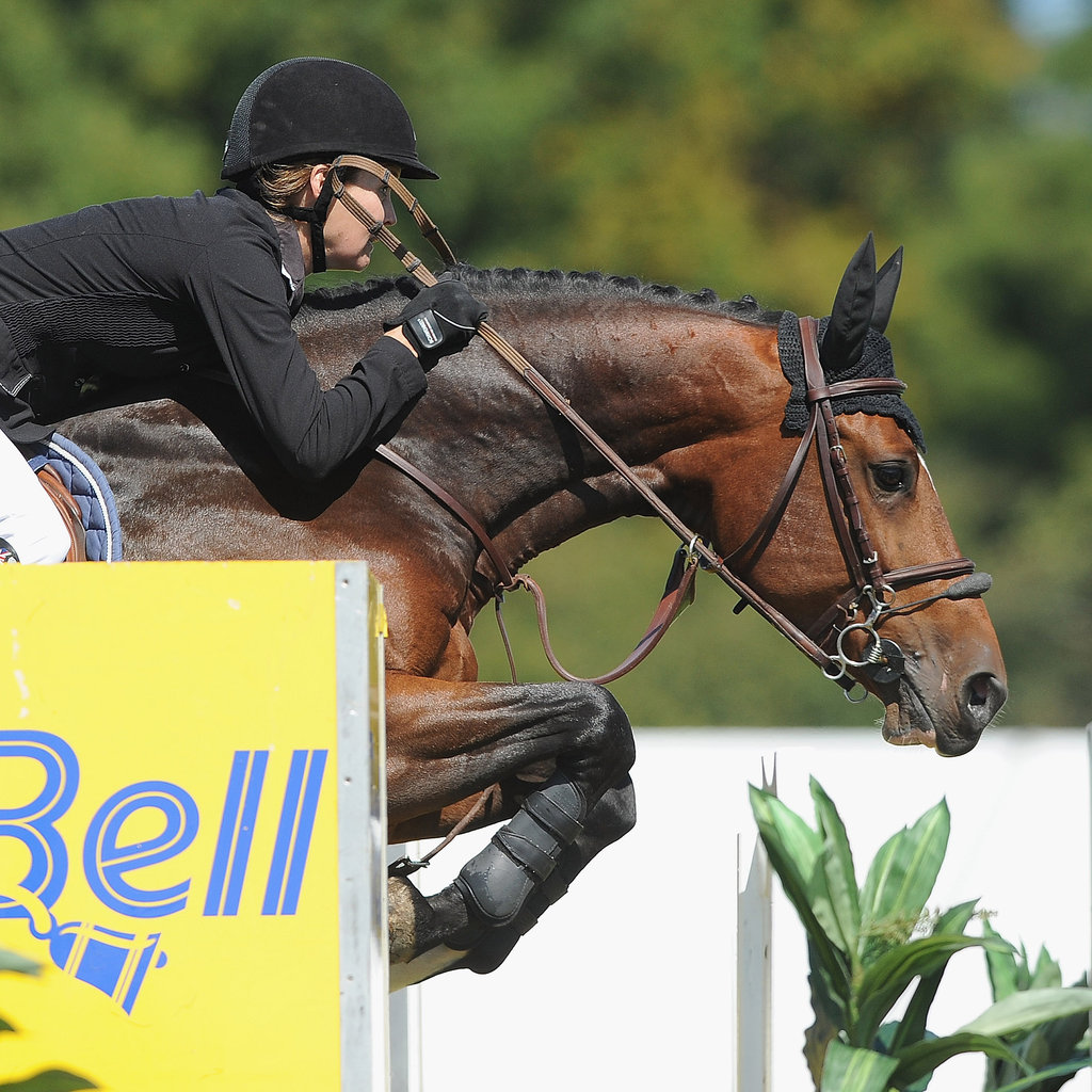 Cheltenham Gold Cup, Olympic Cup Horse of the Year, Saut Hermès Photos
