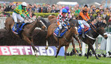Synchronised clears the final hurdle in the Cheltenham Gold Cup steeplechase.