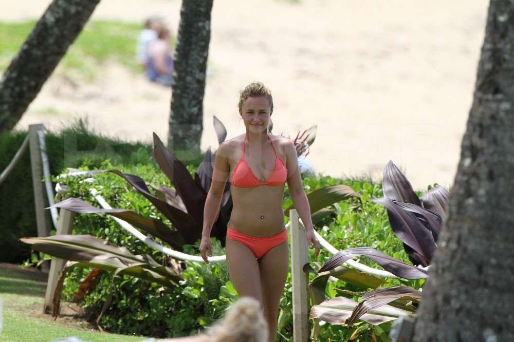 Hayden Panettiere vacationed in Hawaii in a bikini.