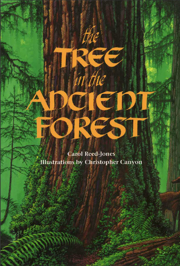 The Tree in the Ancient Forest ($9)