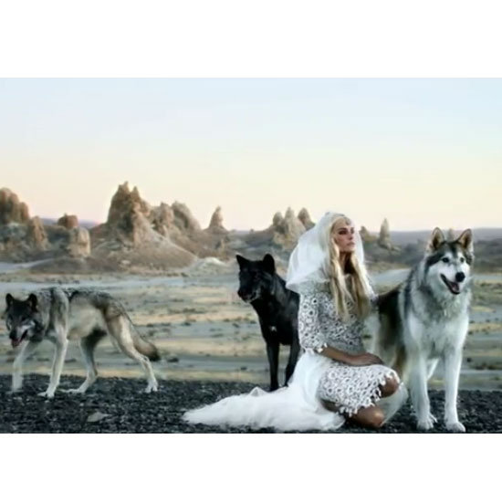 Isabel Lucas Wears Chanel Dress in Angus and Stone's New Video Clip Bird On The Buffalo