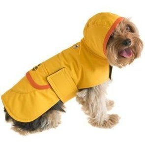 Spring Raincoats For Dogs