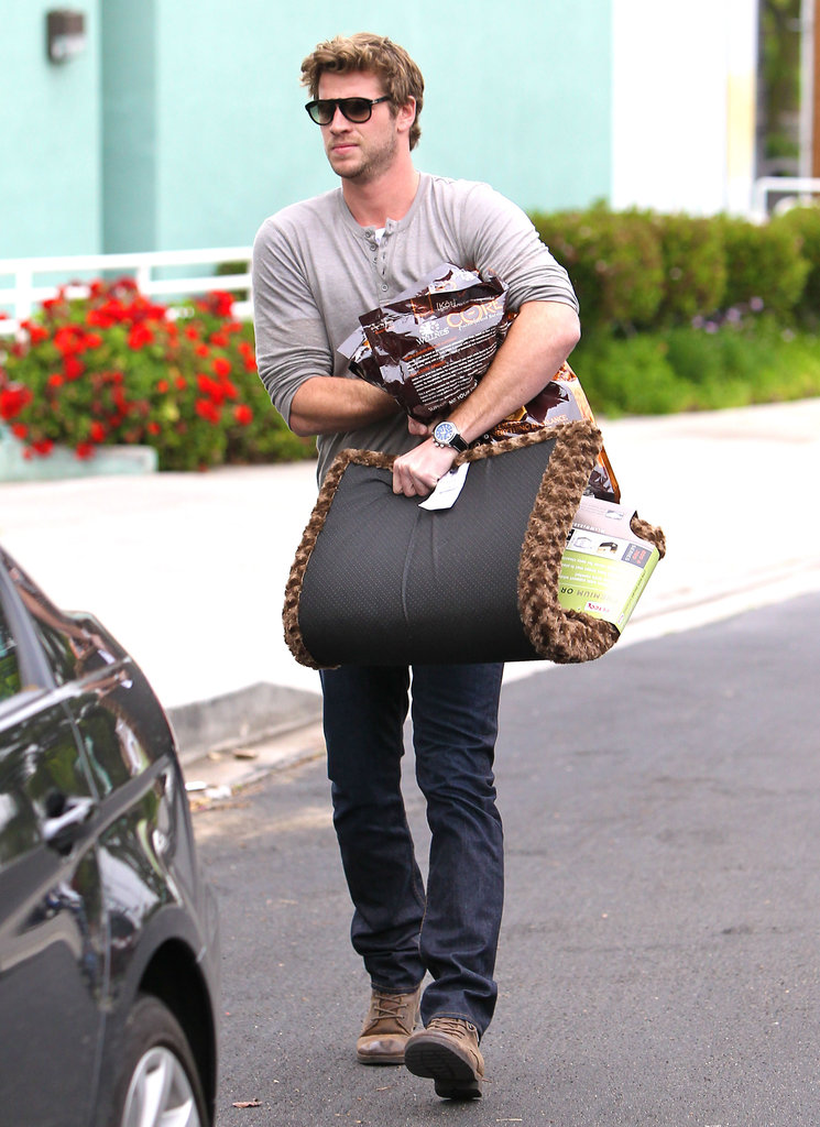Liam Hemsworth bought a new dog bed.