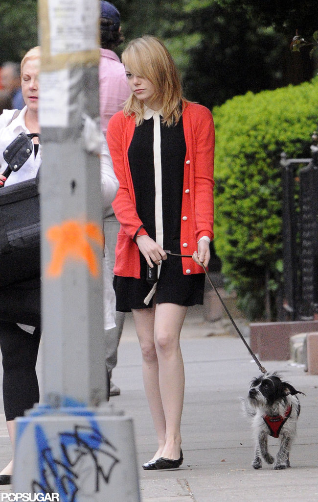 Emma Stone and her dog accompanied her mom to a car after her visit in NYC.