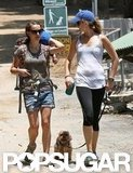 Natalie Portman hiked with Aleph Millepied and a pal in LA.