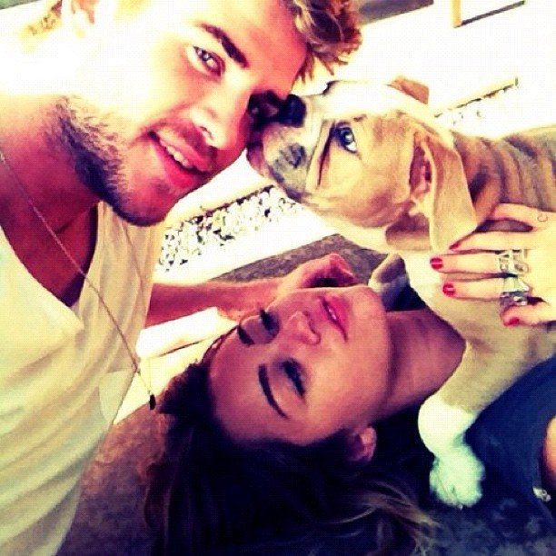 Liam Hemsworth got cosy with fiancée Miley Cyrus and their dog. Source: Instagram user liamhemsworth_