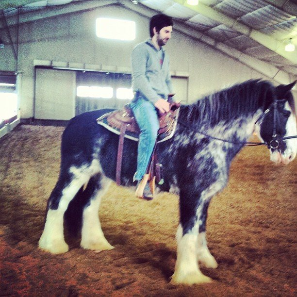Josh Kelley didn't mind being on his high horse. Source: Instagram user joshbkelley