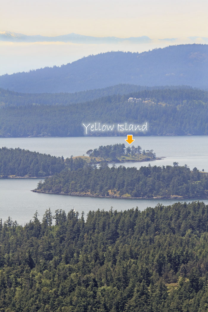 view of Yellow Island from the top of Turtleback Mtn, Orcas Island