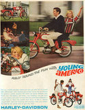 Young America looks like a lot of fun!