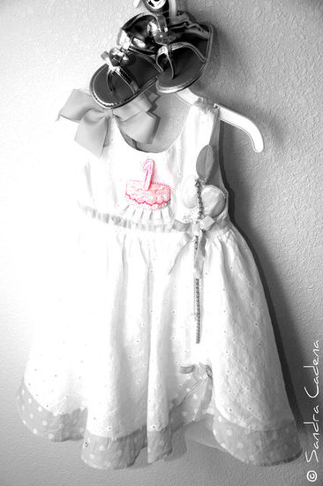 Ava Lynn's 1st Birthday Party Dress