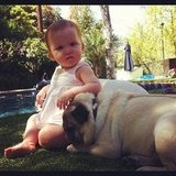 Haven Warren relaxed by the pool with a furry friend. Source: Instagram user cash_warren