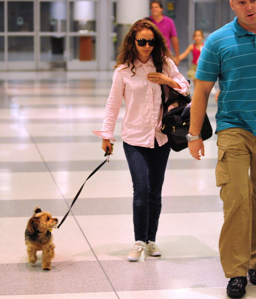 Natalie Portman walked Whiz on a leash through JFK's baggage claim.