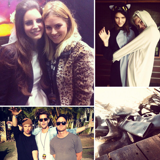 Splendour in the Grass Candids: Fun Photos Celebs Shared on Social Media