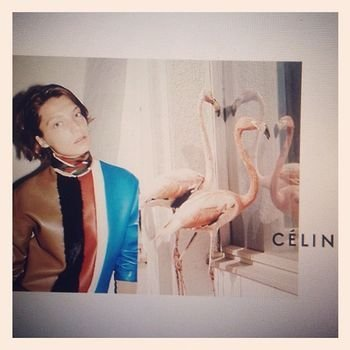 Daria Werbowy looks too cool in Céline's Juergen Teller-shot Fall campaign.
