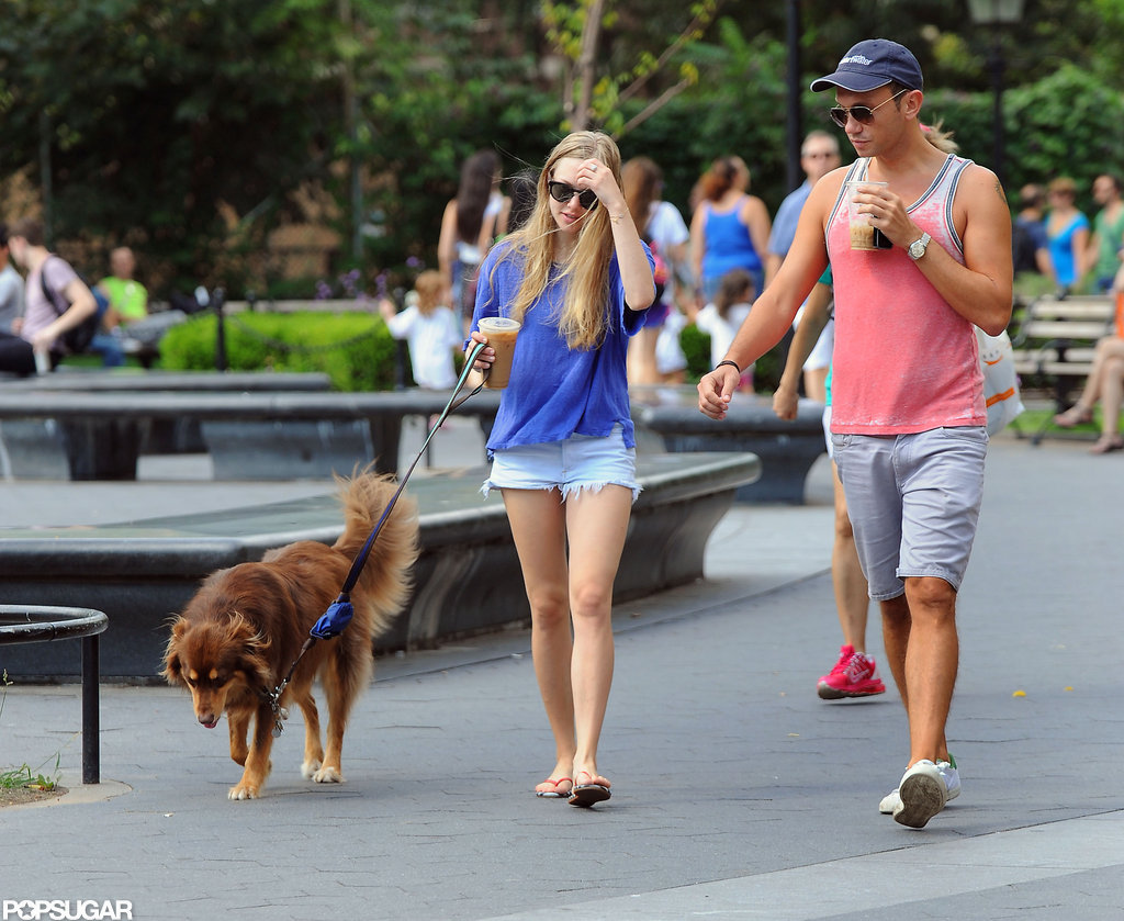 Amanda Seyfried wore her hair down while walking with a friend.