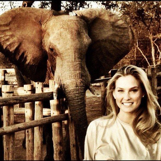 Bar Refaeli took a magical trip to Africa where she met up with a new friend.  Source: Instagram user barrefaeli