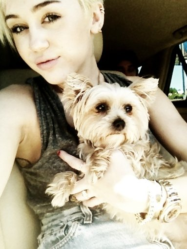 Miley Cyrus held a pretty pose with a too-cute pup. Source: Twitter user MileyCyrus