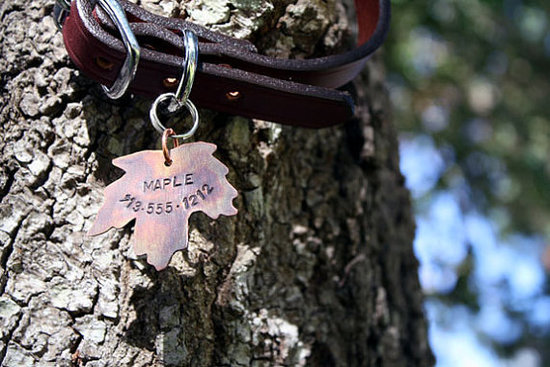 Maple Pet ID Tag ($13)
