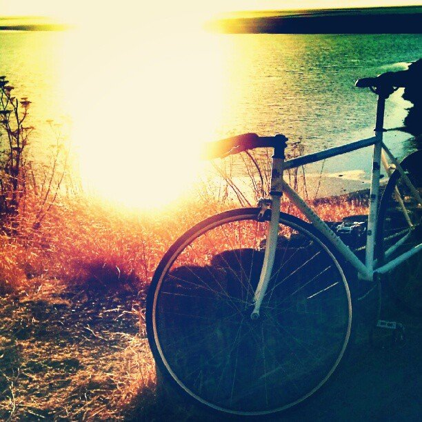 Ride Bikes at Sunset