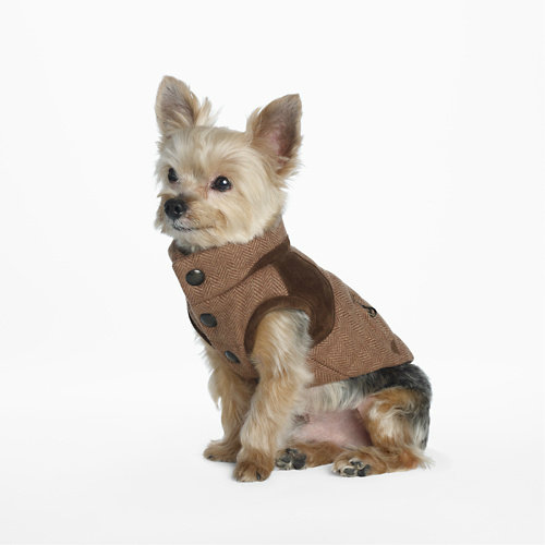 Ralph Lauren Tweed Dog Vest